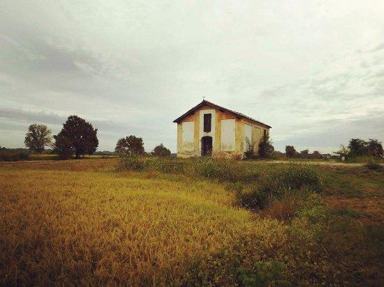Zerbolò, Włochy: La Chiesetta della Guasta , solitaria   in mezzo alle risaie
