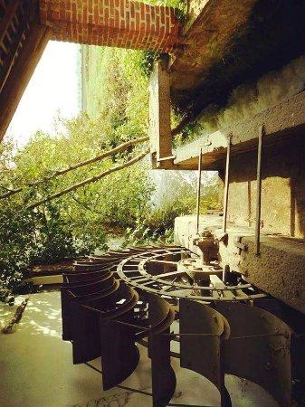 Zerbolò, Włochy: Un piccolo  mulino  ad acqua  non funzionante   ma molto bello sperduto tra le campagne   di Zer