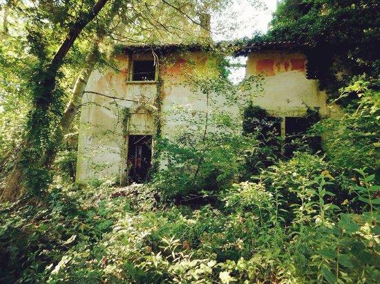 """Bereguardo, Ιταλία: Viene chiamata la """" Cà di biss """" questa villa ormai in rovina in mezzo  ai boschi"""