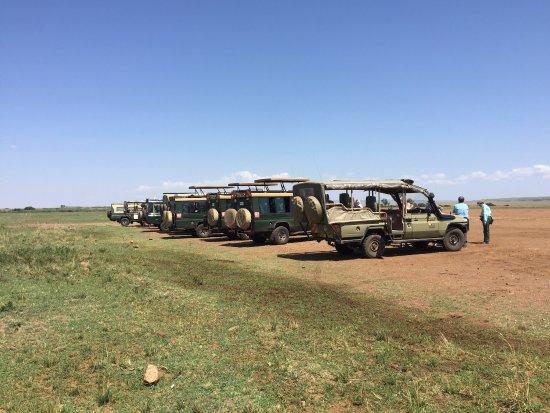 TrueAfrica - The Safari Company Day Tours: photo1.jpg