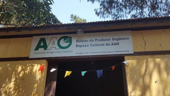 Feira do Produtor Organico