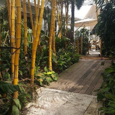 The Palms Hotel & Spa: IMG_20170916_115205_796_large.jpg
