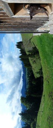 Seeg, Tyskland: Alpe Beichelstein