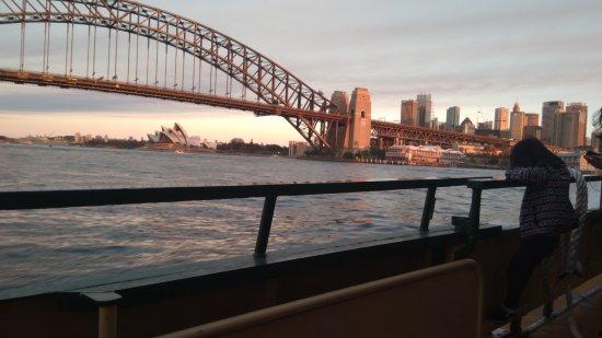 Sydney Ferries: 雪梨渡船
