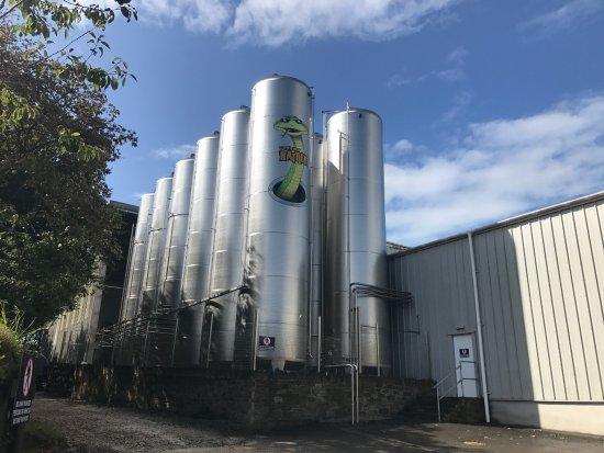 Truro, UK: Tanks of cider