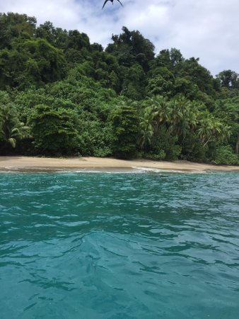 Drake Bay, Costa Rica: photo1.jpg