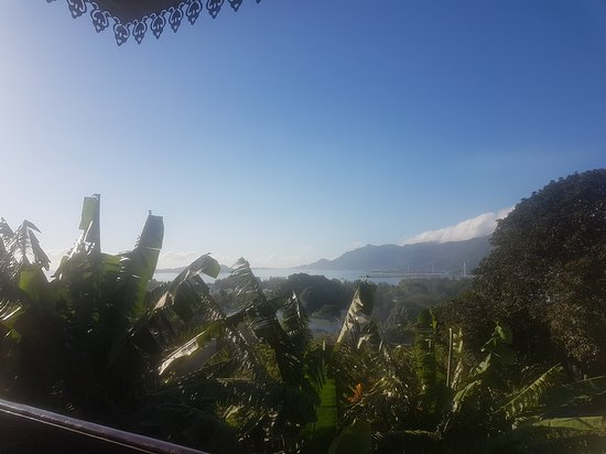 Chez Lorna : 20170916_063804_large.jpg