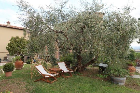 Casole d'Elsa, Italia: Il giardino