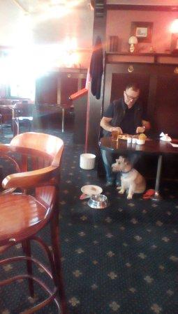 Forfar, UK: Dog eating off palate yuk.