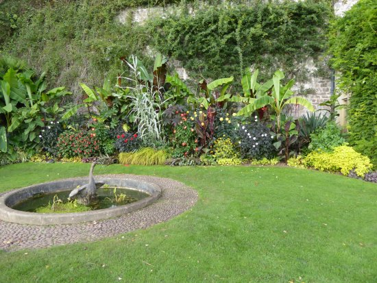Dunster, UK: Colurful plants