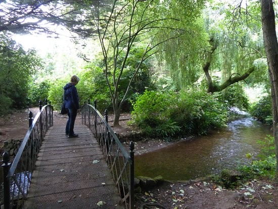 Dunster, UK: Walk along the river