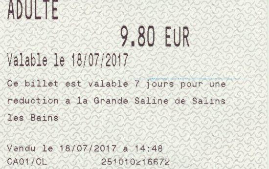 Royal Saltworks of Arc-et-Senans (La Saline Royale): Toegangsticket