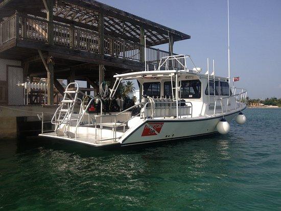 Potret Cayman Brac