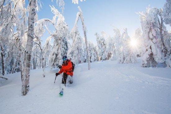 Sugarloaf Mountain: Sunrise tele-turns