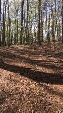 แอเมิร์สต์, แมสซาชูเซตส์: Example of a trail