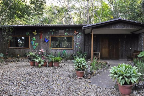 Mariposa Jungle Lodge: The Main Lodge with restaurant and bar, gift shop, and air-conditioned library