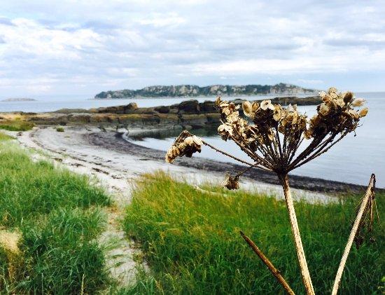 Île aux Lièvres Photo