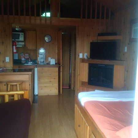 Staunton / Walnut Hills KOA: Glamping in Cabin #8, bed, futon, TV and electric fireplace.