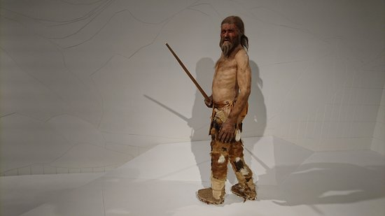 Musée archéologique du Tyrol du Sud : DSC_0350_large.jpg
