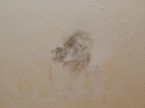 Comfort Inn Ship Creek: Mold and dirt on bathroom ceileing