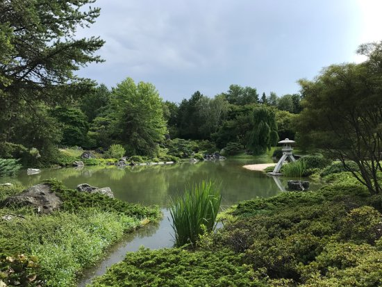 Le jardin botanique de montreal picture of hotel omni for Le jardin botanique camping