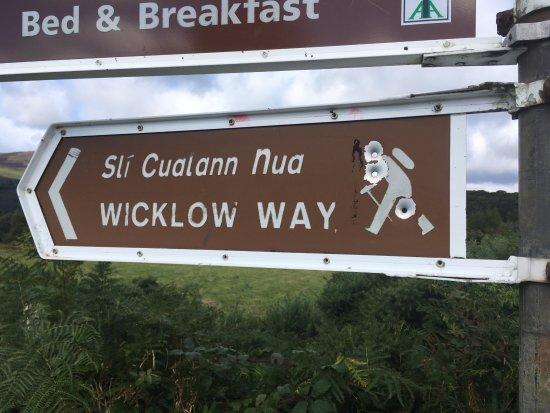 Roundwood, Ιρλανδία: Wicklow Way
