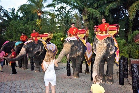 Kamala, Thailand: Слоны - гордость парка «FantaSea» - 02