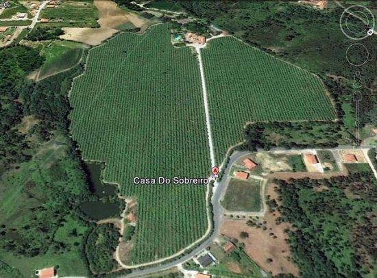 Vila Verde, Portugal: Vista aérea da Casa do Sobreiro