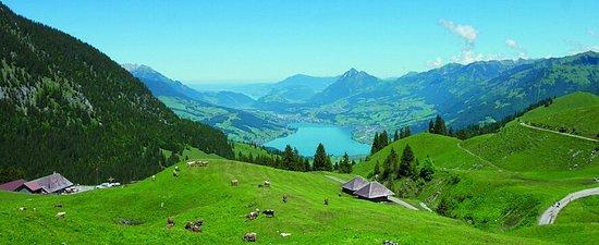 Fuonalp ob Giswil (Bild ab der Website)
