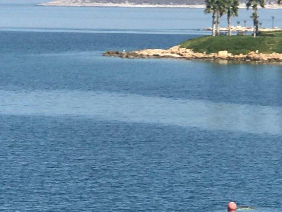 Blue Dreams Resort: photo4.jpg