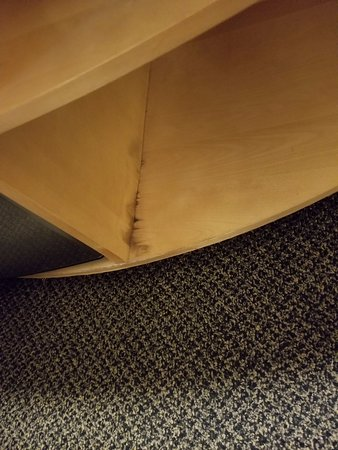 DoubleTree by Hilton Hotel Savannah Airport: water damage by fridge