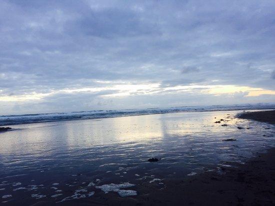 Widemouth Bay, UK: photo4.jpg