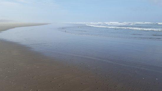 Surfside Resort: 20170913_092640_large.jpg