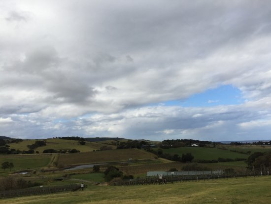 Gerringong, Avustralya: View from restaurant - ask for window seat when booking