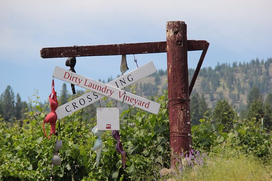Summerland, Canada: Popular local vineyard just off the rail, good place for lunch!