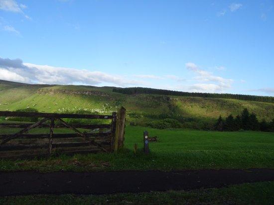 County Antrim, UK: Glenariff Forest Park