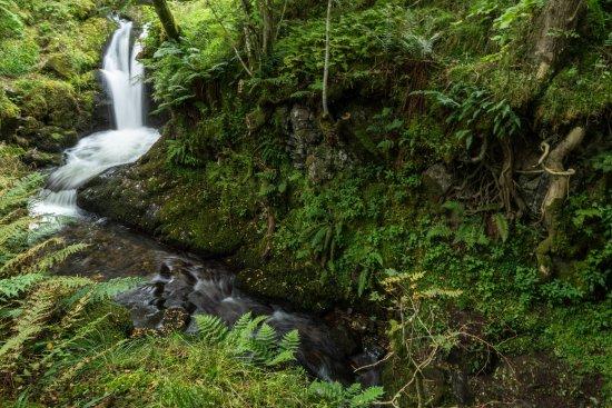 Dollar, UK: Waterfall