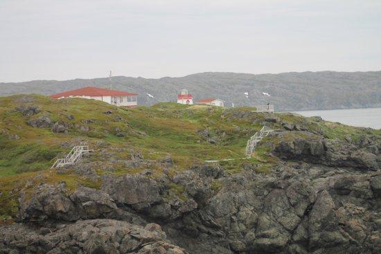 Whale Watchers Trail