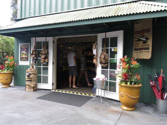 Mountain Thunder Coffee Plantation: Gift shop