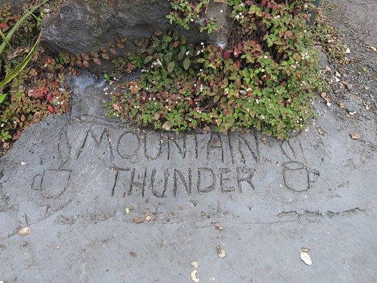 Mountain Thunder Coffee Plantation: Mountain Thunder