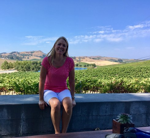Napa Winery Shuttle All You Need To Know Before You Go