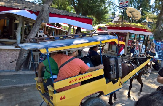 Gili Islands, Indonesia: Horse and Buggy taxi