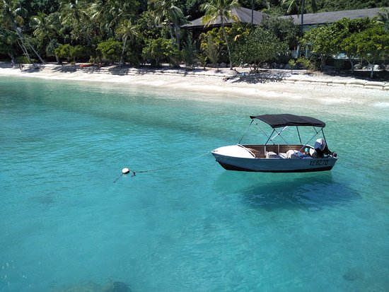フィッツロイ島 Picture