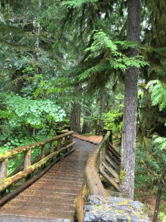 Sublimity, OR: Beautiful bridge on the Waterfall Trail