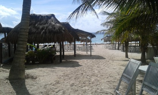 Bahia Divers : Vista