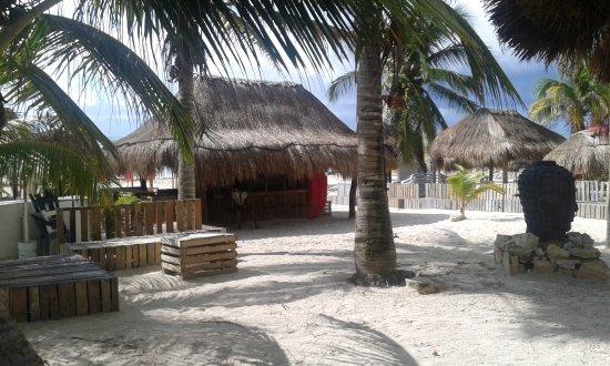 Bahia Divers : Paraiso