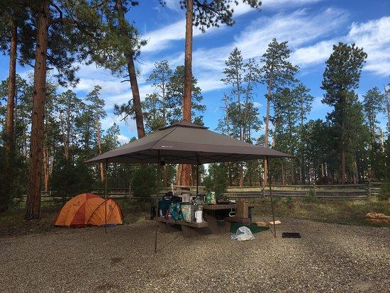 Jacob Lake, AZ: photo0.jpg