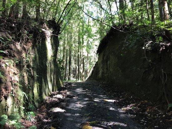 EIshoji Tunnel