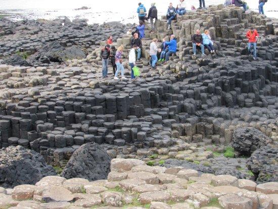 Vagabond Tours: Giant's Causeway