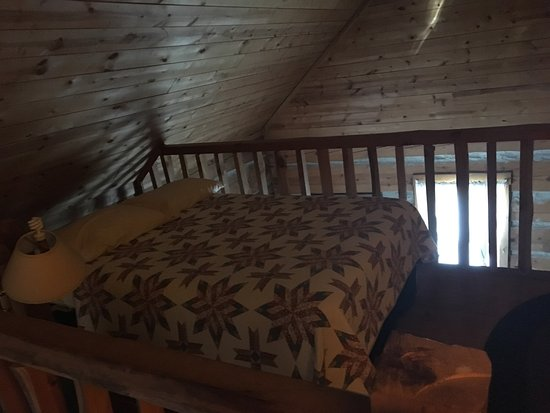 Galena Log Cabin Getaway: Photo3